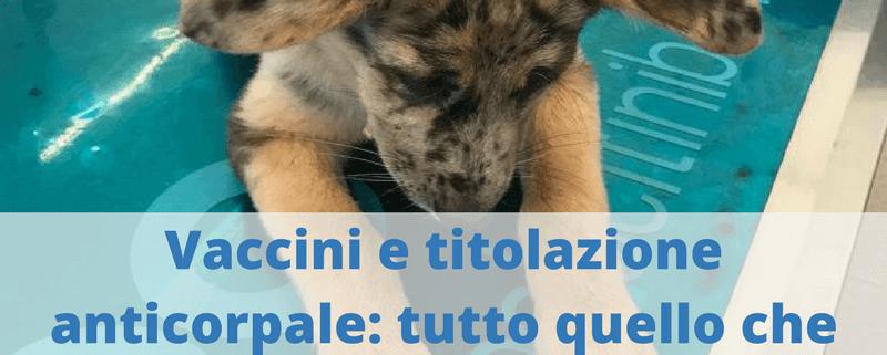 Vaccini e titolazione anticorpale nel cane