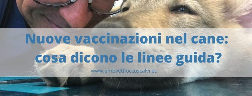 vaccinazioni le nuove linee guida
