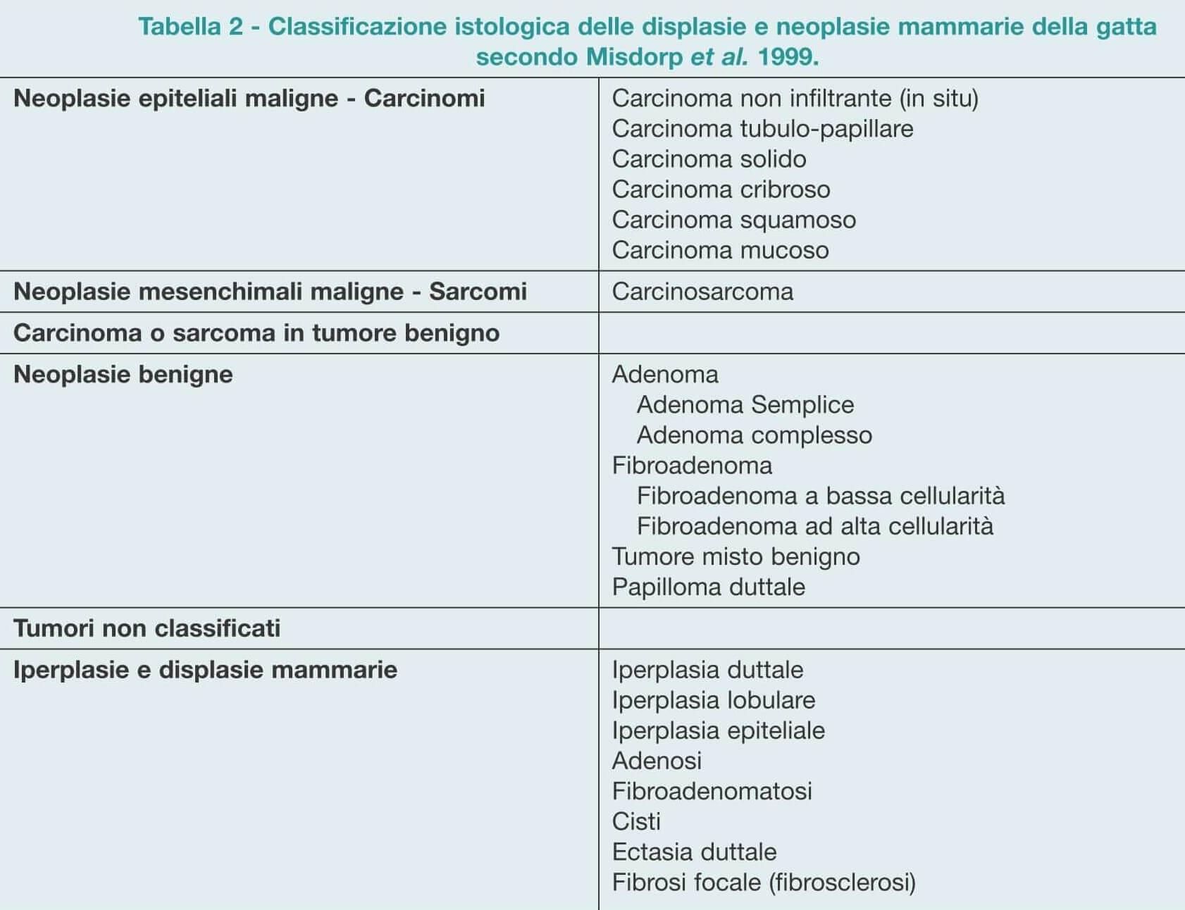 tumore mammario_ gatta