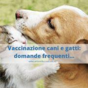 vaccinazioni cani e gatti
