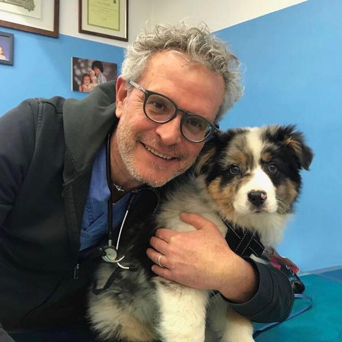 Alessandro fiocco veterinario Verona